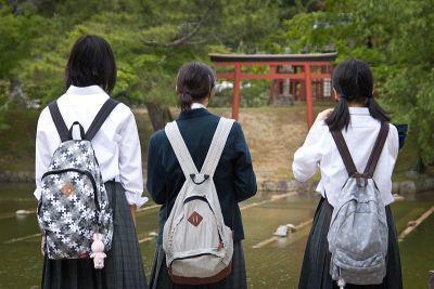 0457-hikume_ryukku_seoi_(7391288036).jpg